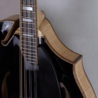mandolin jazz 5 blacktop