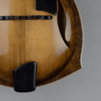 mandolin jazz 5 fhole