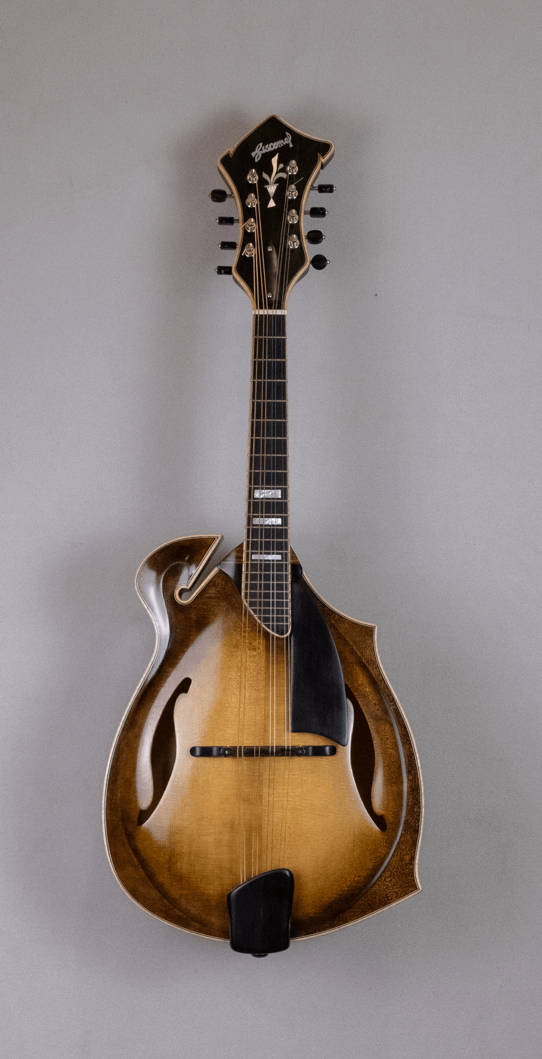 mandolin jazz 5 front