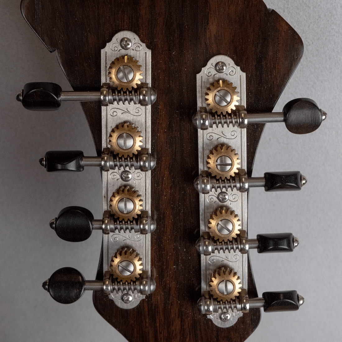 mandolin jazz 5 machine head