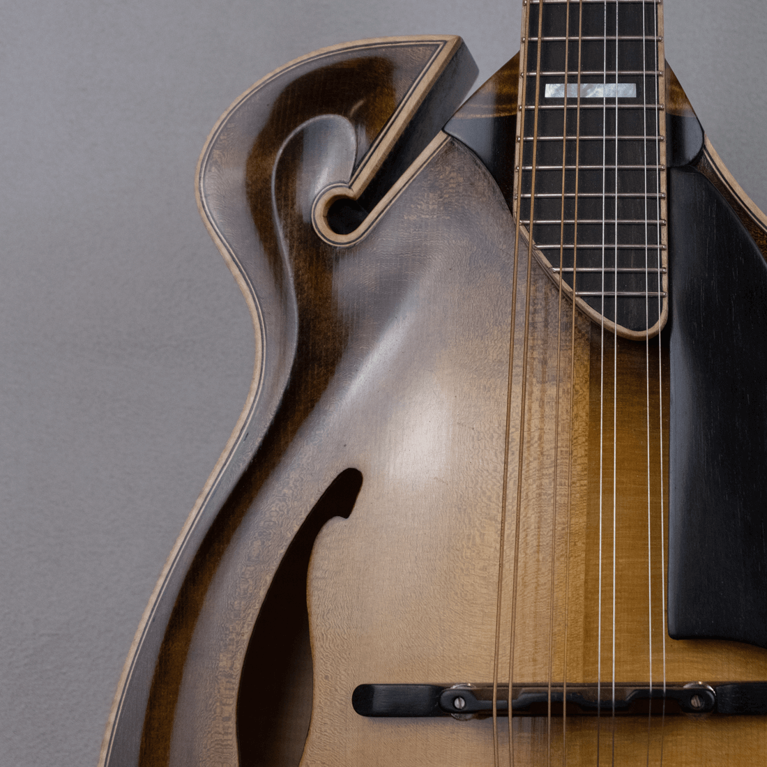 mandolin jazz 5 ricciolo