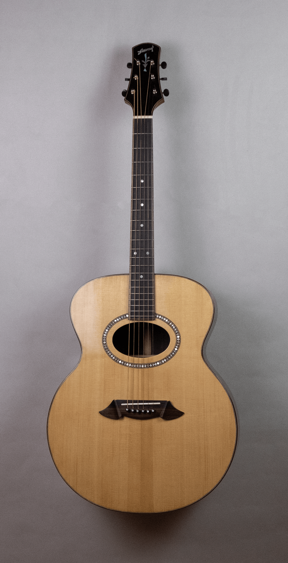 acoustic guitar rosewood front