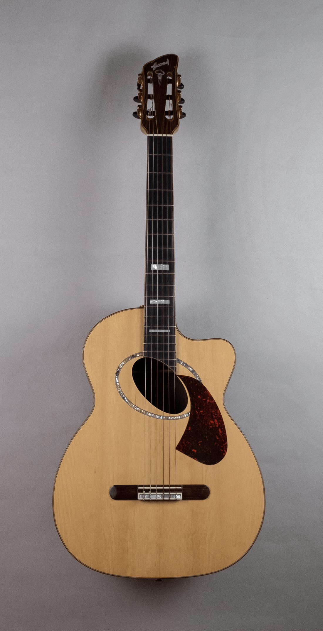 guitar acoustic nylon front