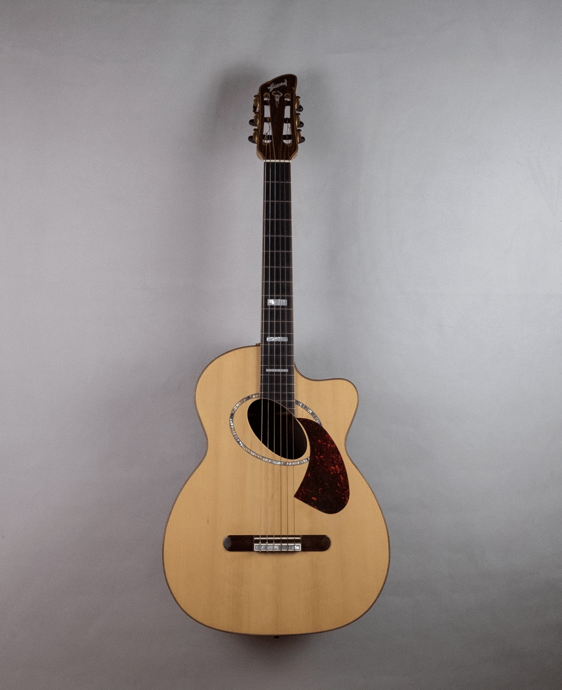 guitar acoustic nylon model