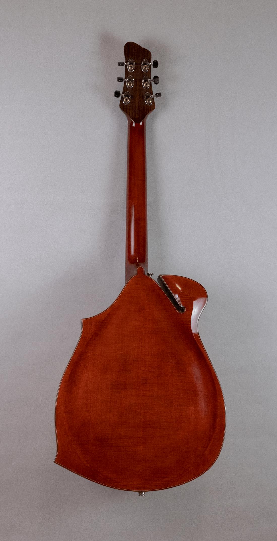 guitar jazz 5 ovalhole back