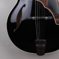 guitar standard jazz fhole