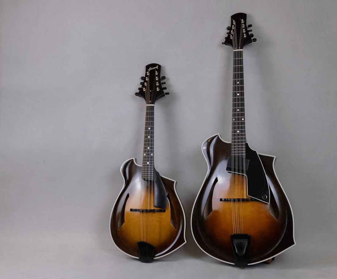 home mandolin octave blues 4