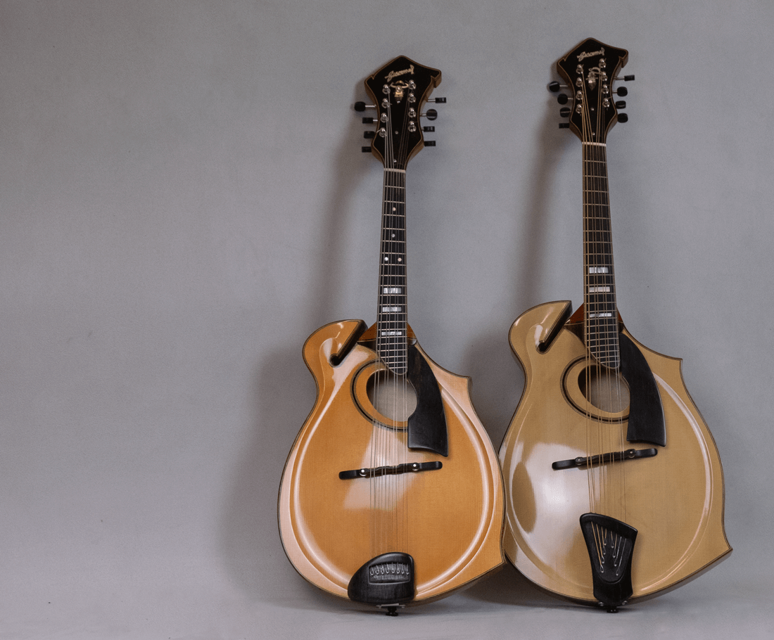 home mandolin mandola jazz 5