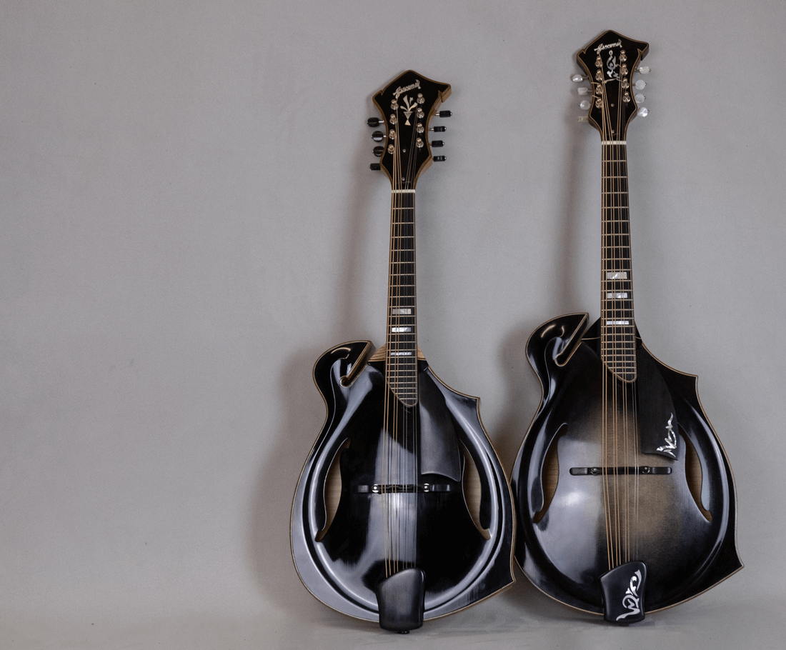 home mandolin mandola jazz 5 blacktop