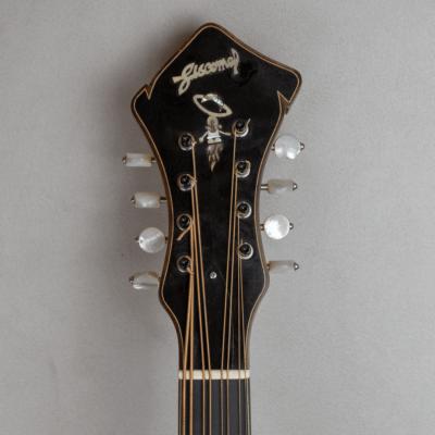 mandocello jazz 5 headstock