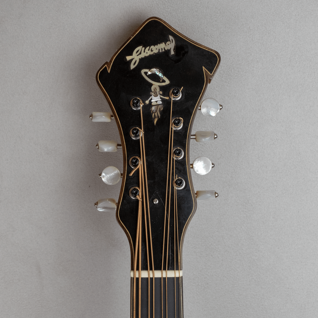 mandocello jazz 5 headstock