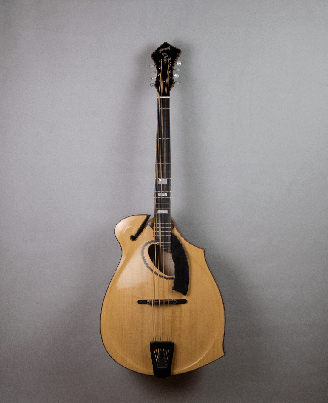 mandocello jazz 5 model