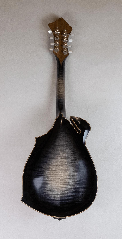 mandola jazz 5 back