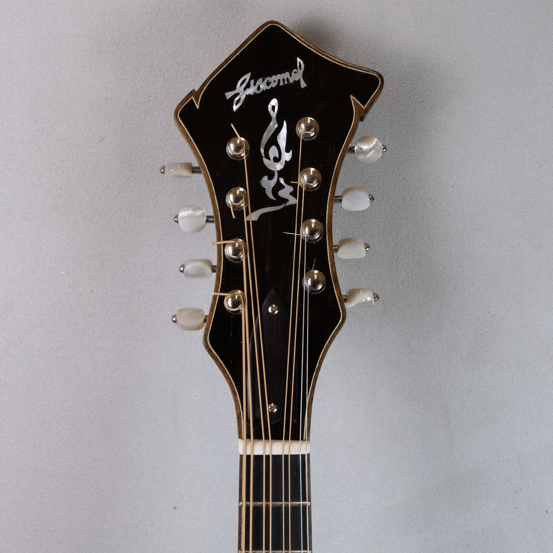 mandola jazz 5 headstock