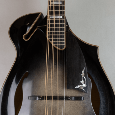 mandola jazz 5 pickguard