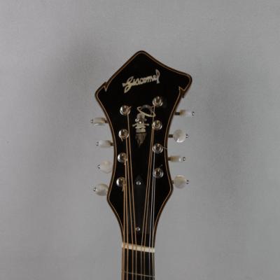 mandola jazz 5 headstock