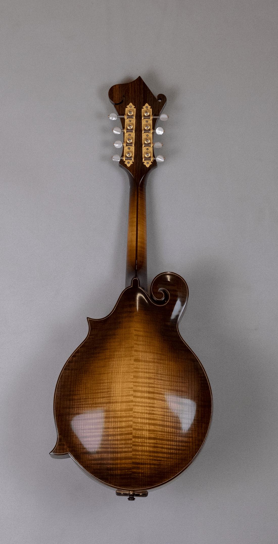 mandolin F5 copy back