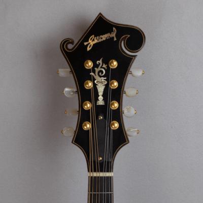mandolin F5 copy headstock