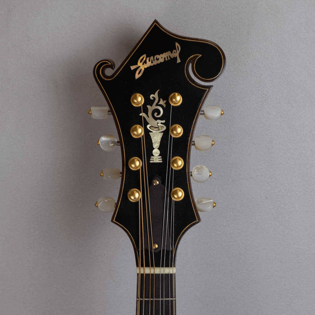 mandolin F5 copy headstock