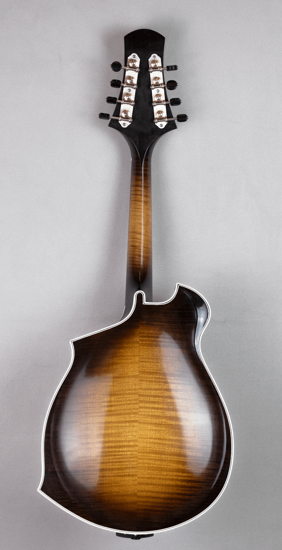 mandolin blues 4 back