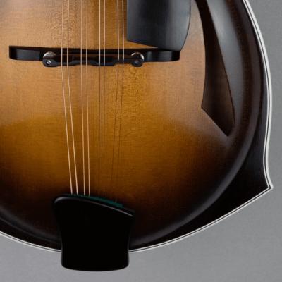 mandolin blues 4 dettail