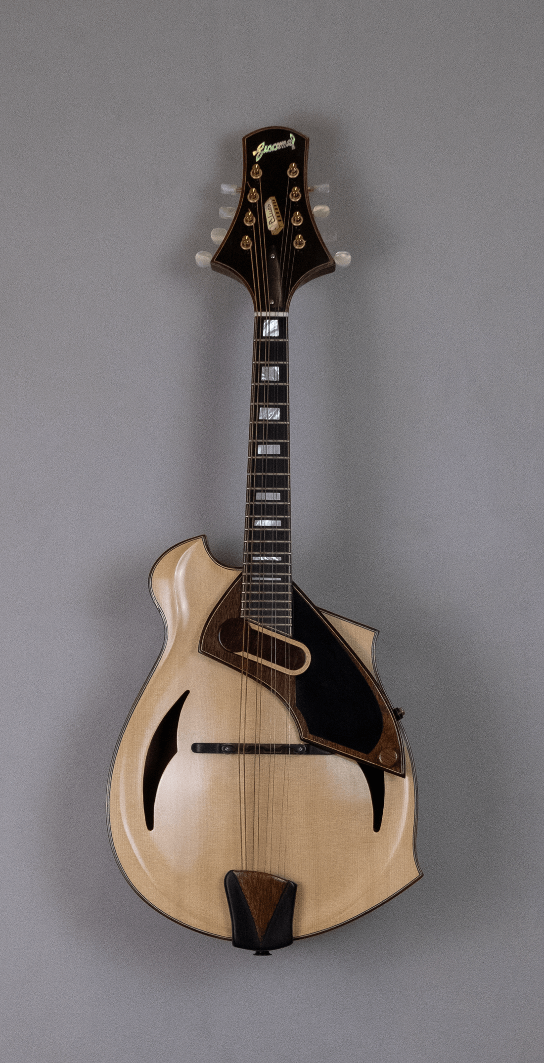 mandolin blues 4 with magnetic pickup amplified front