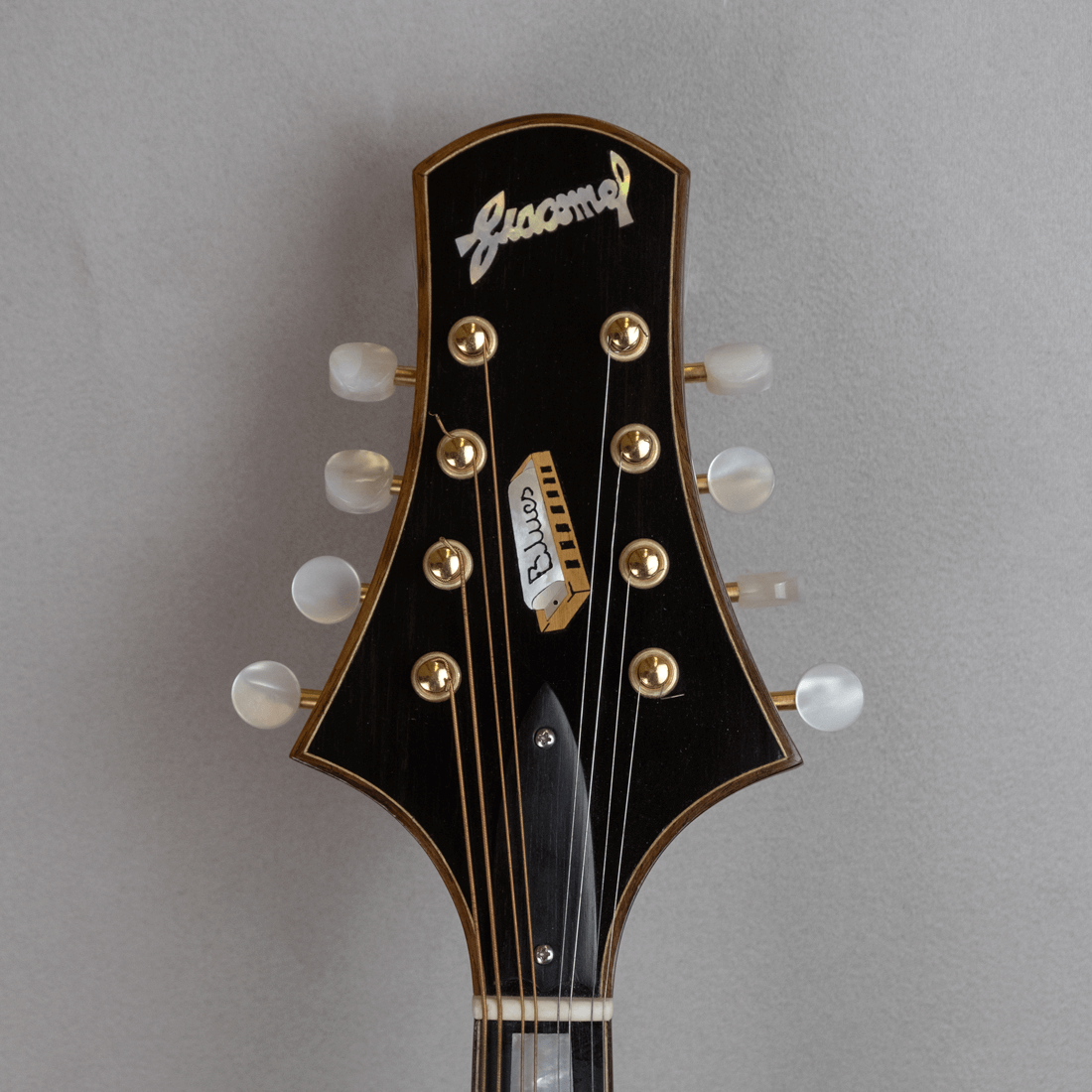 mandolin blues 4 with magnetic pickup back