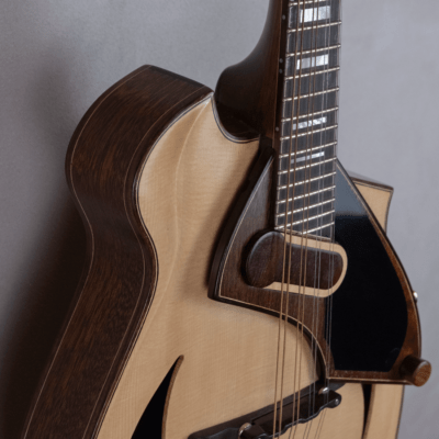 mandolin blues 4 with magnetic pickup amplified parallax