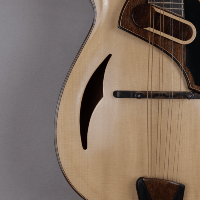 mandolin blues 4 with magnetic pickup amplified model