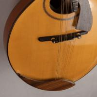 mandolin italian for concert cordiera