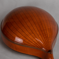 mandolin italian for concert strips