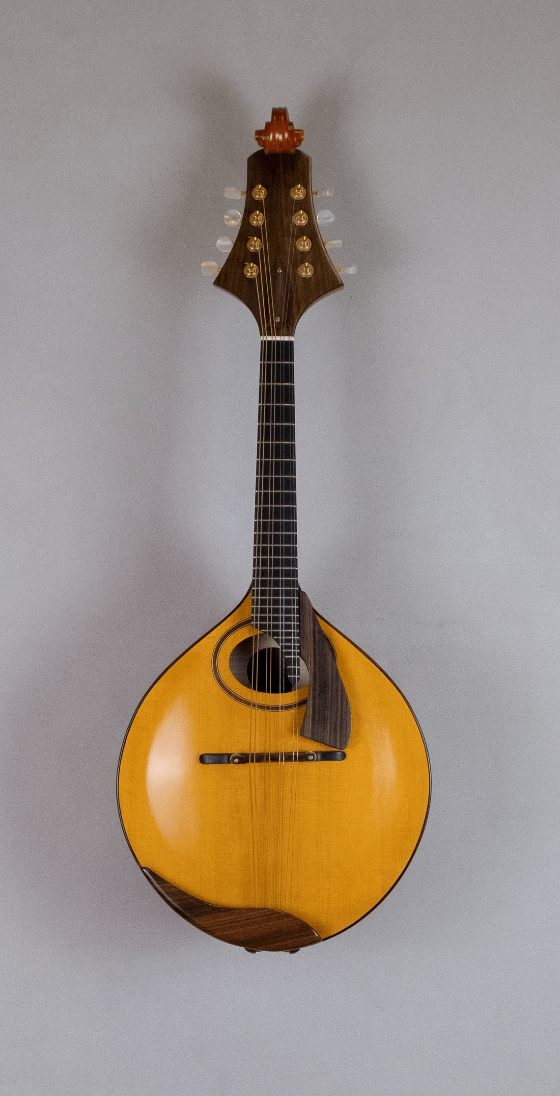 mandolin italian for concert front