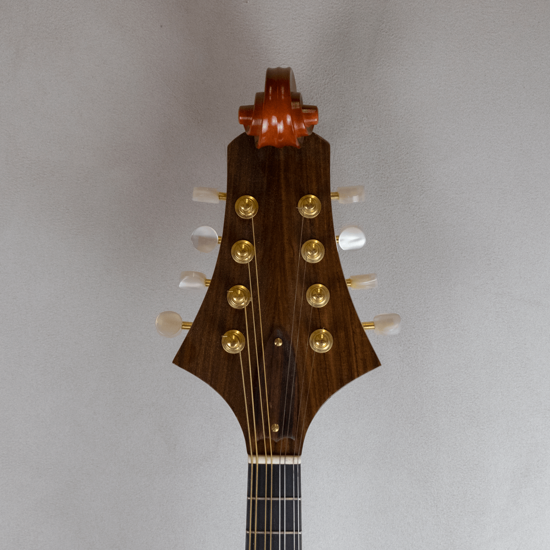 mandolin italian for concert headstock