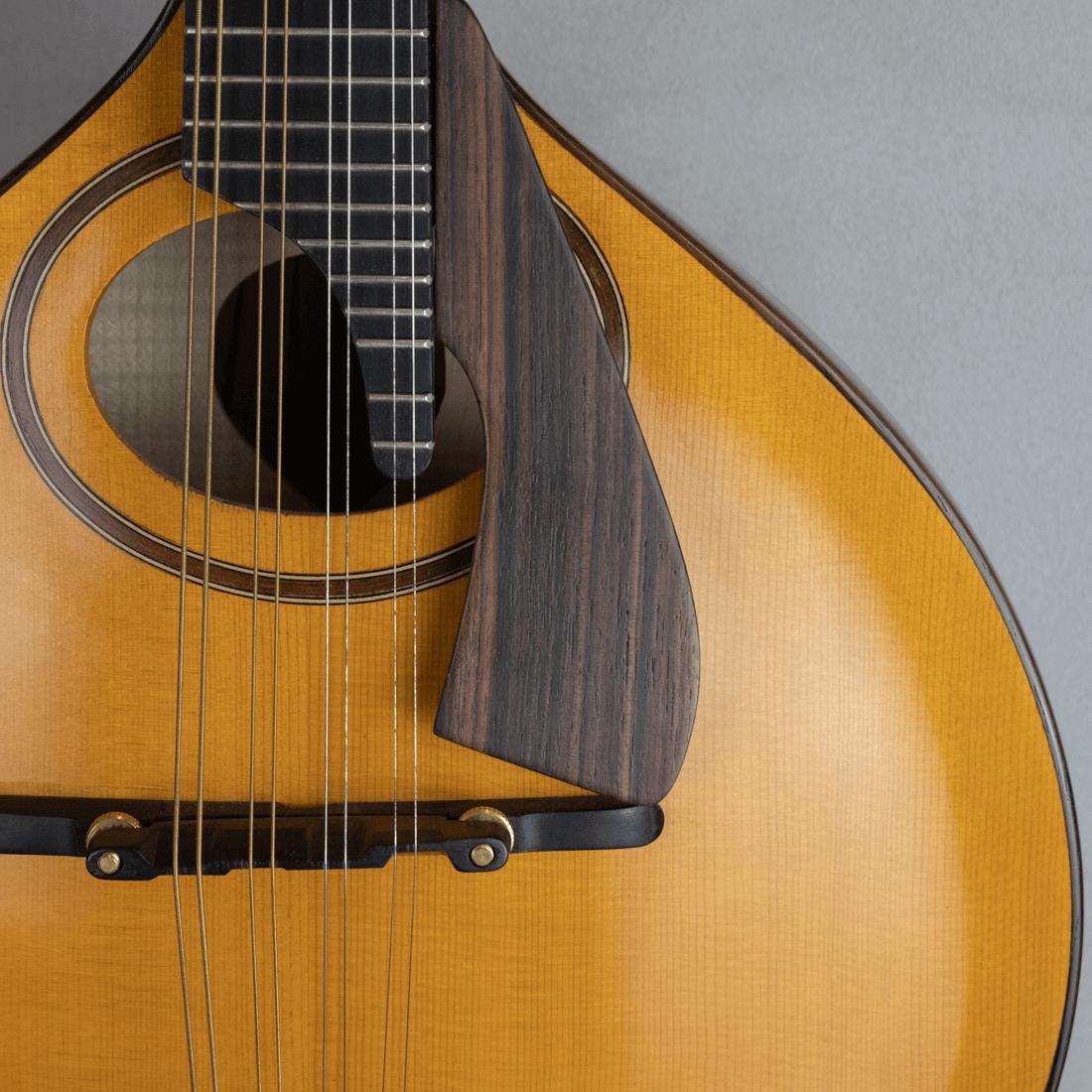 mandolin italian for concert ovalhole
