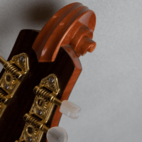 mandolin italian for concert scroll
