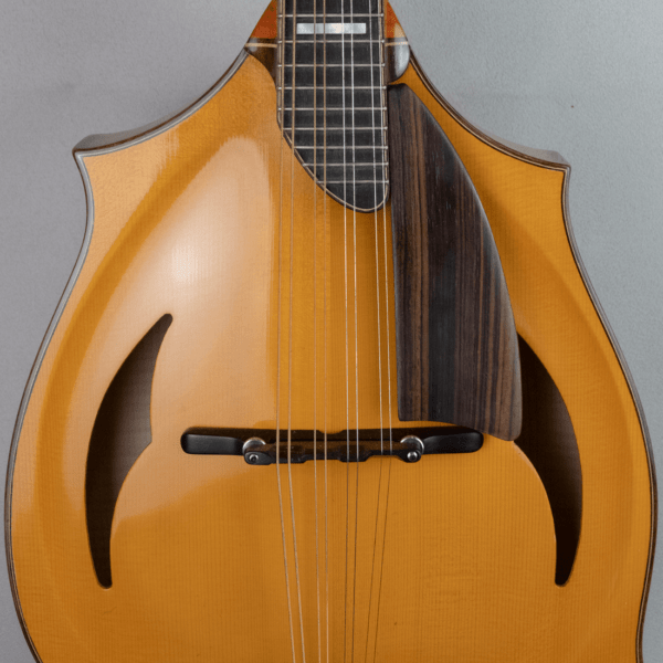 mandolin_jazz_3_bridge