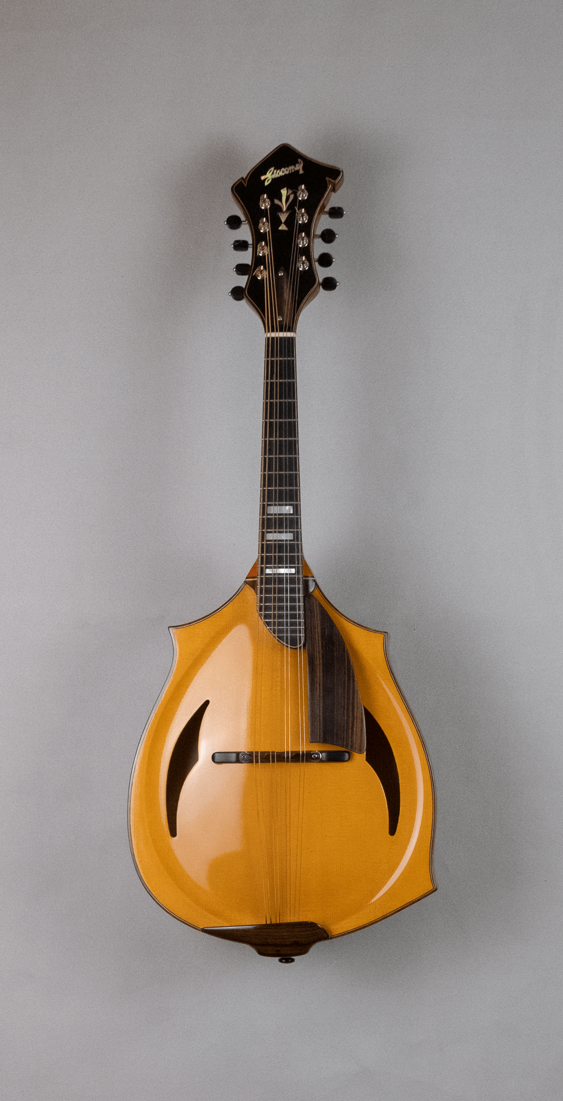 mandolin jazz 3 front