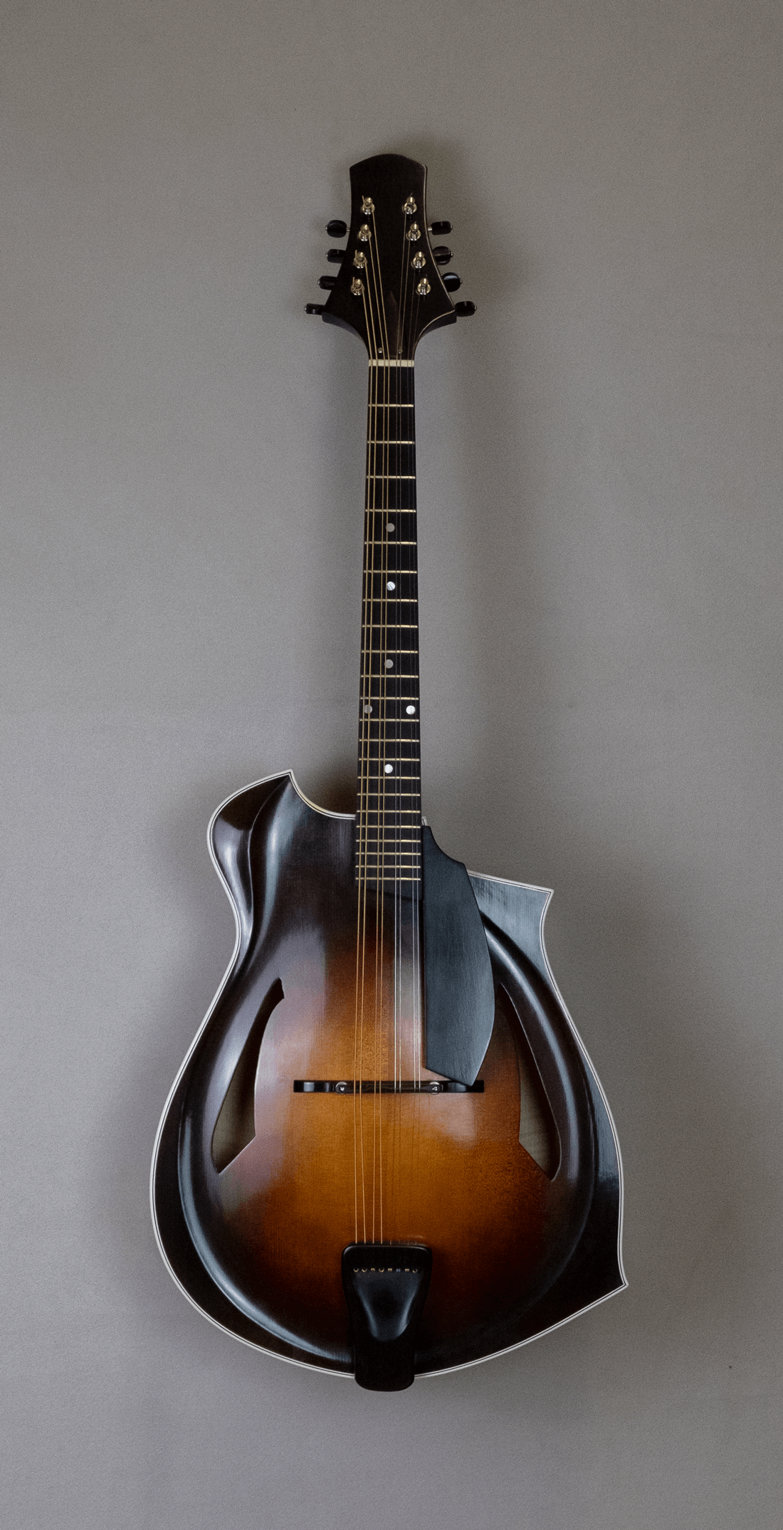 octave mandolin blues 4 front